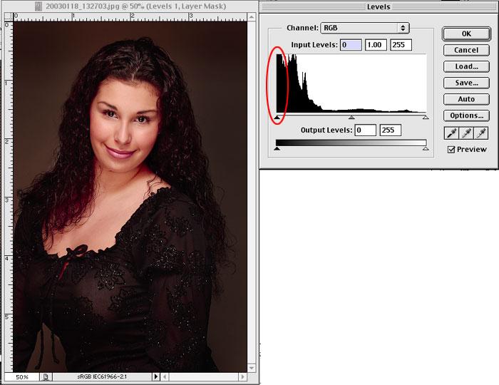 http://www.keradwc.com/outgoing_images/lowkey_histogram.jpg